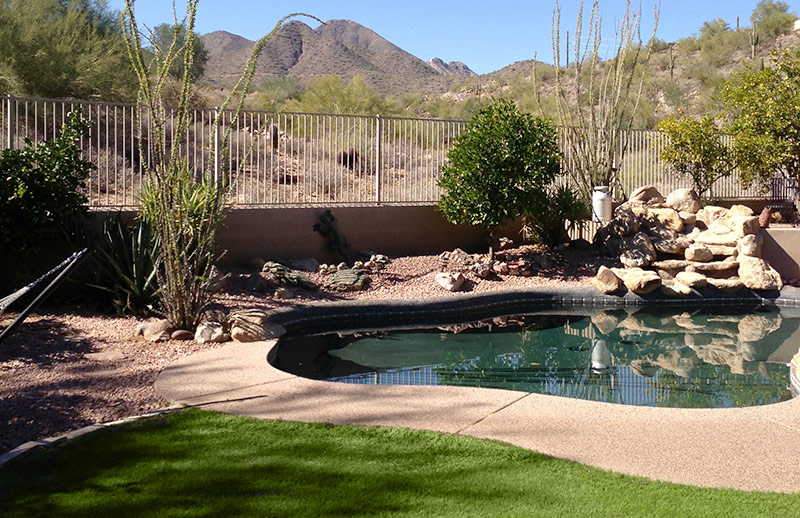 Pool in Fountain Hills